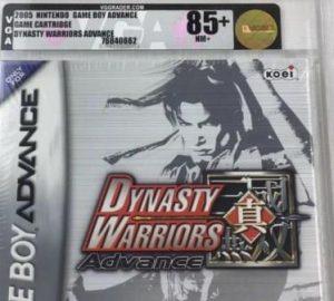 Dynasty Warrior Advance