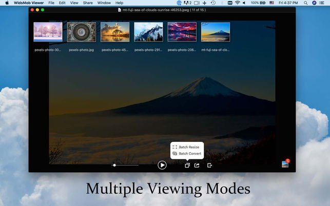 WidsMob multiple viewing mode